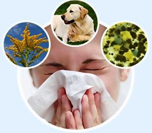 Причины заболевания аллергией