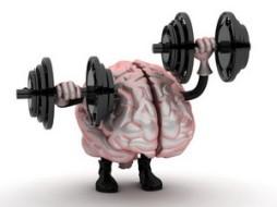 Исследователи заверяют, что тренировка нервных клеток сделает Вас сильнее